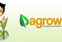 Bisnis Baru di Bidang Pertanian