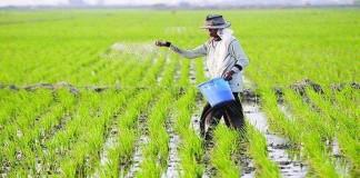 Demi Tingkatkan Produksi, Petani Dihimbau Gunakan Hasil Teknologi Balitbangtan