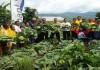 Penduduk Terus Meningkat, Produktivitas Pertanian Harus Dijaga