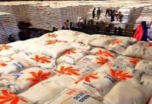Kementerian BUMN Himbau Bulog Bantu Petani Tingkatkan Produktifitas Pertanian
