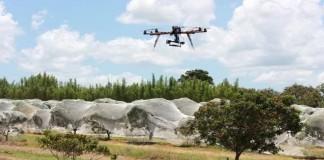 Petani Australia Kembangkan Drone Untuk Membasmi Hama