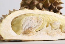 Sentra Produksi Durian di Nusantara