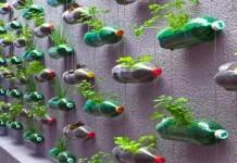 Tips Membuat Rumah Hemat Energi dan Ramah Lingkungan