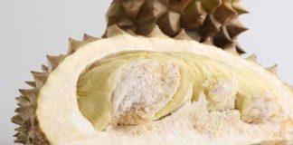 Inilah Berbagai Macam Olahan Durian yang Lezat