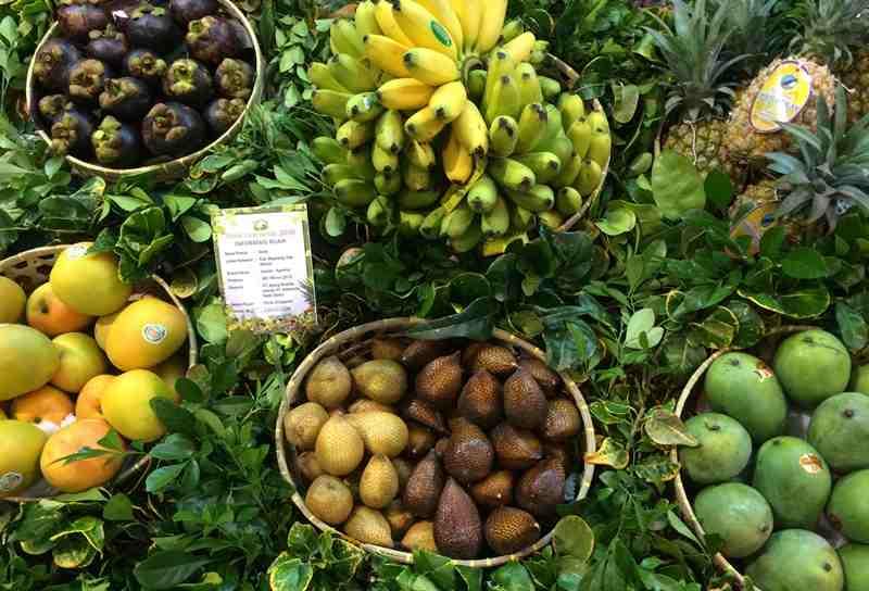 Jenis-jenjs buah-buahan negara tropis seperti Indonesia | Sumber: Pertanianku