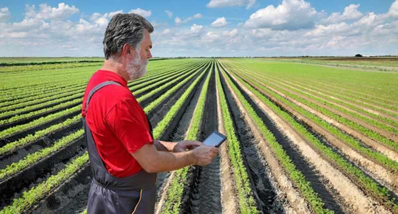 Mahasiswa Ipb Bangkitkan Teknologi Pertanian Tanah Air Dengan Cara