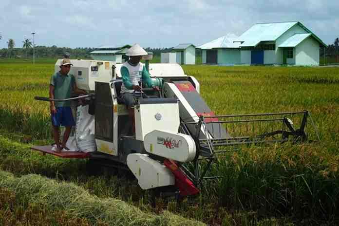 pengembang sektor pertanian