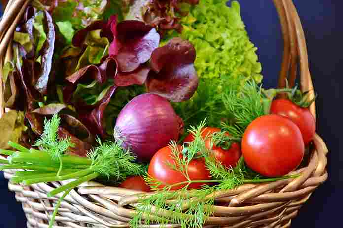 kampung vegetarian