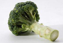 brokoli dalam kemasan kaleng