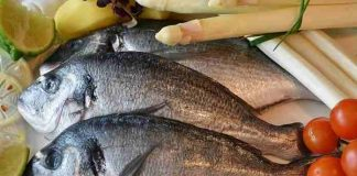 konsumsi ikan bisa perbaiki IQ