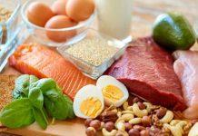 protein nabati dan protein hewani