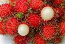 manfaat buah rambutan untuk ibu hamil