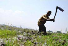 180 ribu alat mesin pertanian