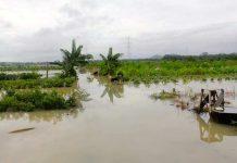 Terdampak bencana siklon tropis
