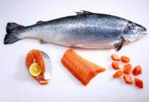 ciri-ciri ikan salmon segar