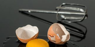 pentingnya konsumsi telur