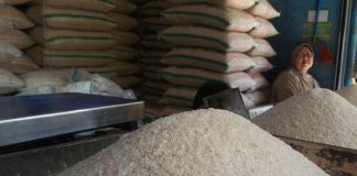 harga beras medium