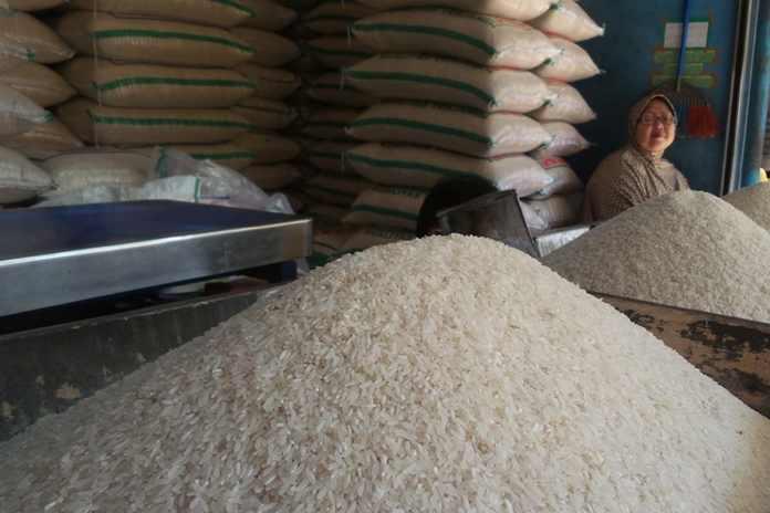 haga beras medium