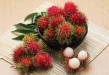 biji buah rambutan