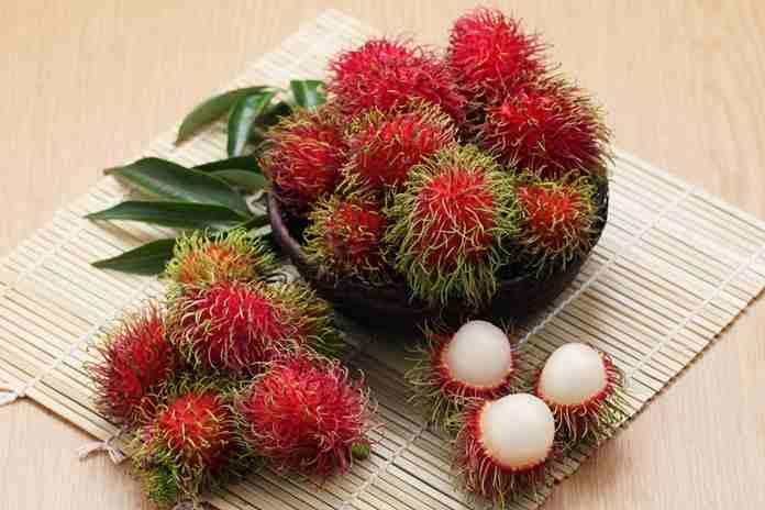 biji buah rambutan