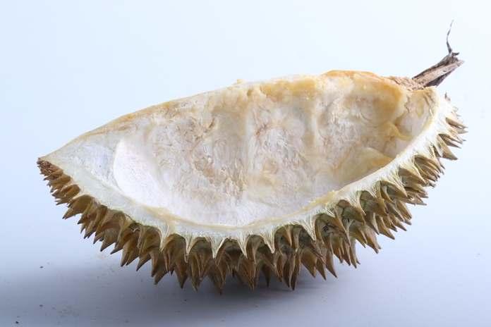 fakta unik kulit durian