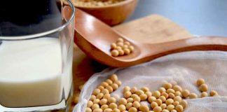 khasiat kacang kedelai