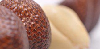 kulit salak punya manfaat yang luar biasa