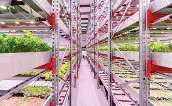 penemuan yang mengubah masa depan makanan dunia