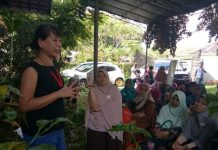 workshop jamur merang