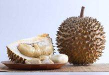 durian menyebabkan penyakit kolesterol