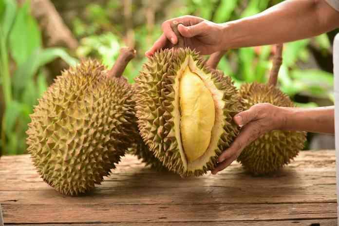 takaran konsumsi durian
