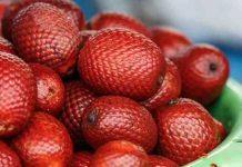 kembaran buah salak