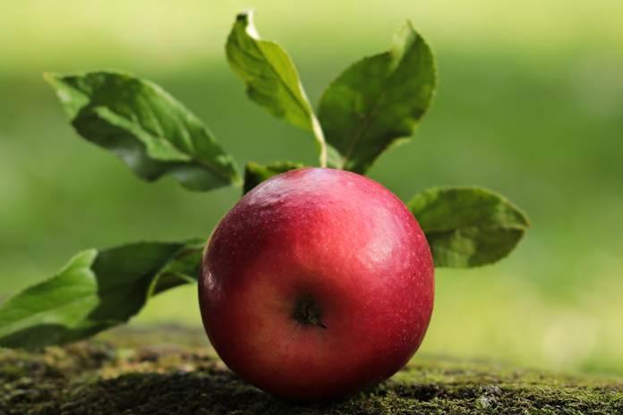 cara cerat menghilangkan pestisida dari apel