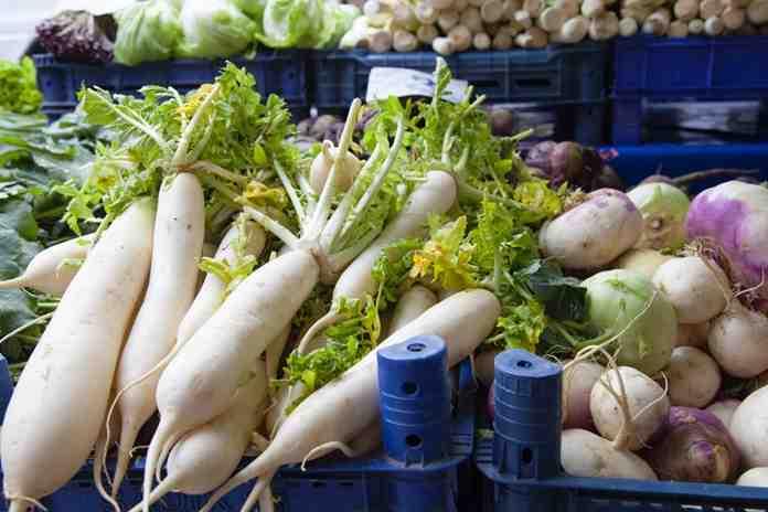 khasiat daun lobak