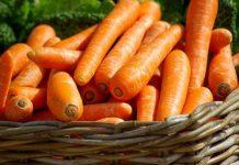 kulit sayur dan buah