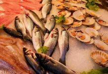 makan ikan bisa turunkan risiko alzheimer