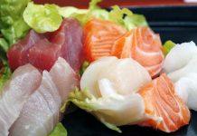 salmon dan tuna