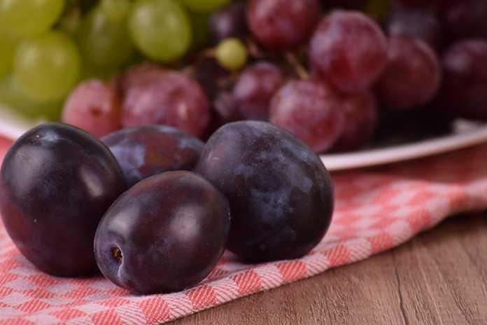 makan buah anggur