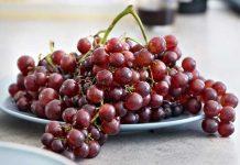 Sejarah perjalanan buah anggur