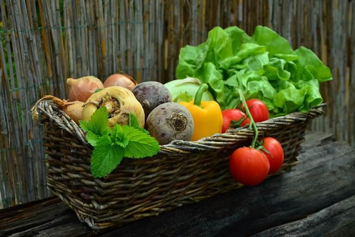listrik dari buah dan sayur