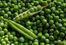 mitos makanan berserat