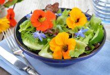 salad bunga