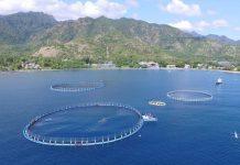 pengelolaan ruang laut