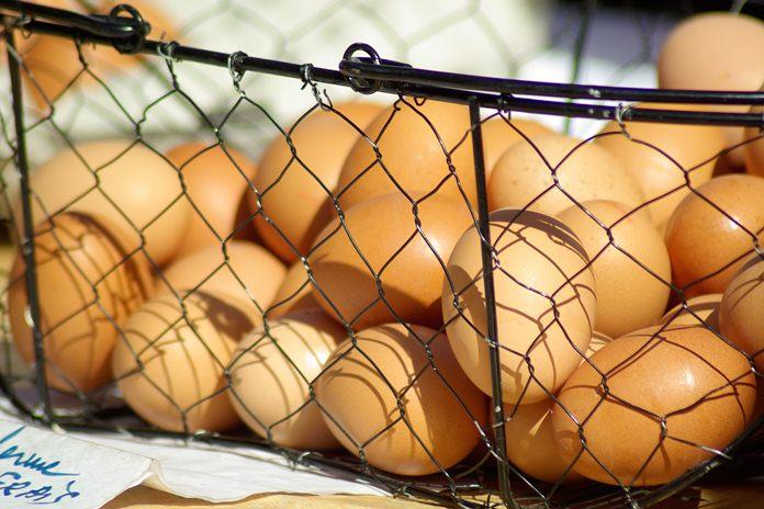 Kenaikan harga telur ayam