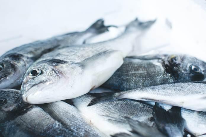 kenali ikan berformalin