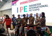 IIPE 2018