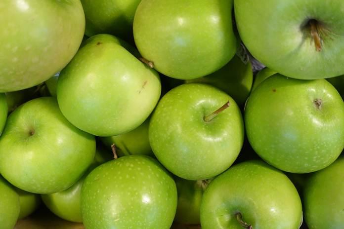 jenis apel terbaik