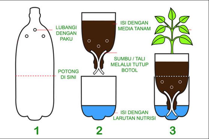 Bertanam hidroponik
