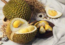 pameran dan kontes durian