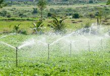 jenis irigasi pertanian